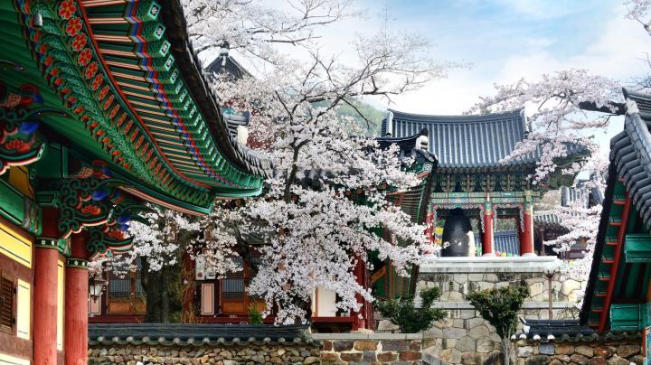 ZUID-KOREA - kleurrijk & modern