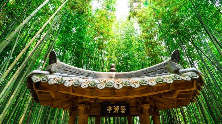 ZUID-KOREA - uitzonderlijk mooie natuur - ronde 2