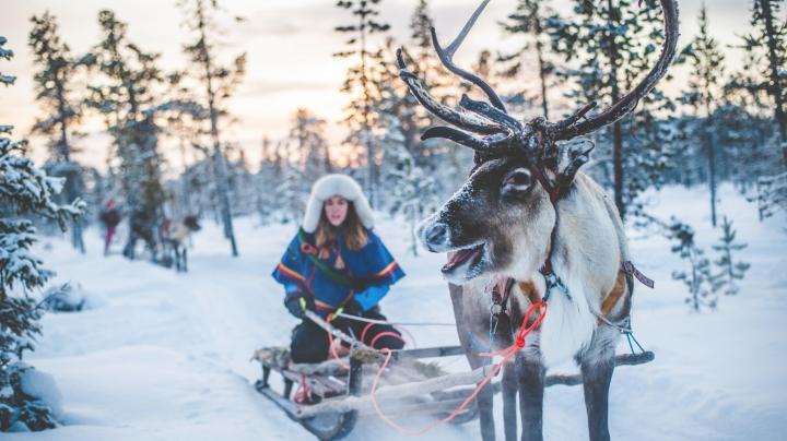 Zweden - unieke wintervakanties